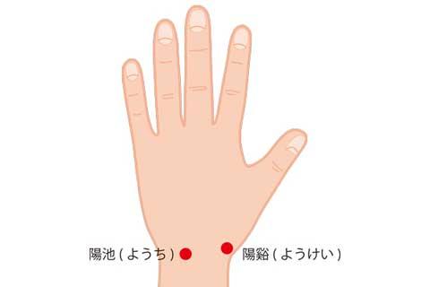付け根 の 手のひら ふくらみ 痛い 親指